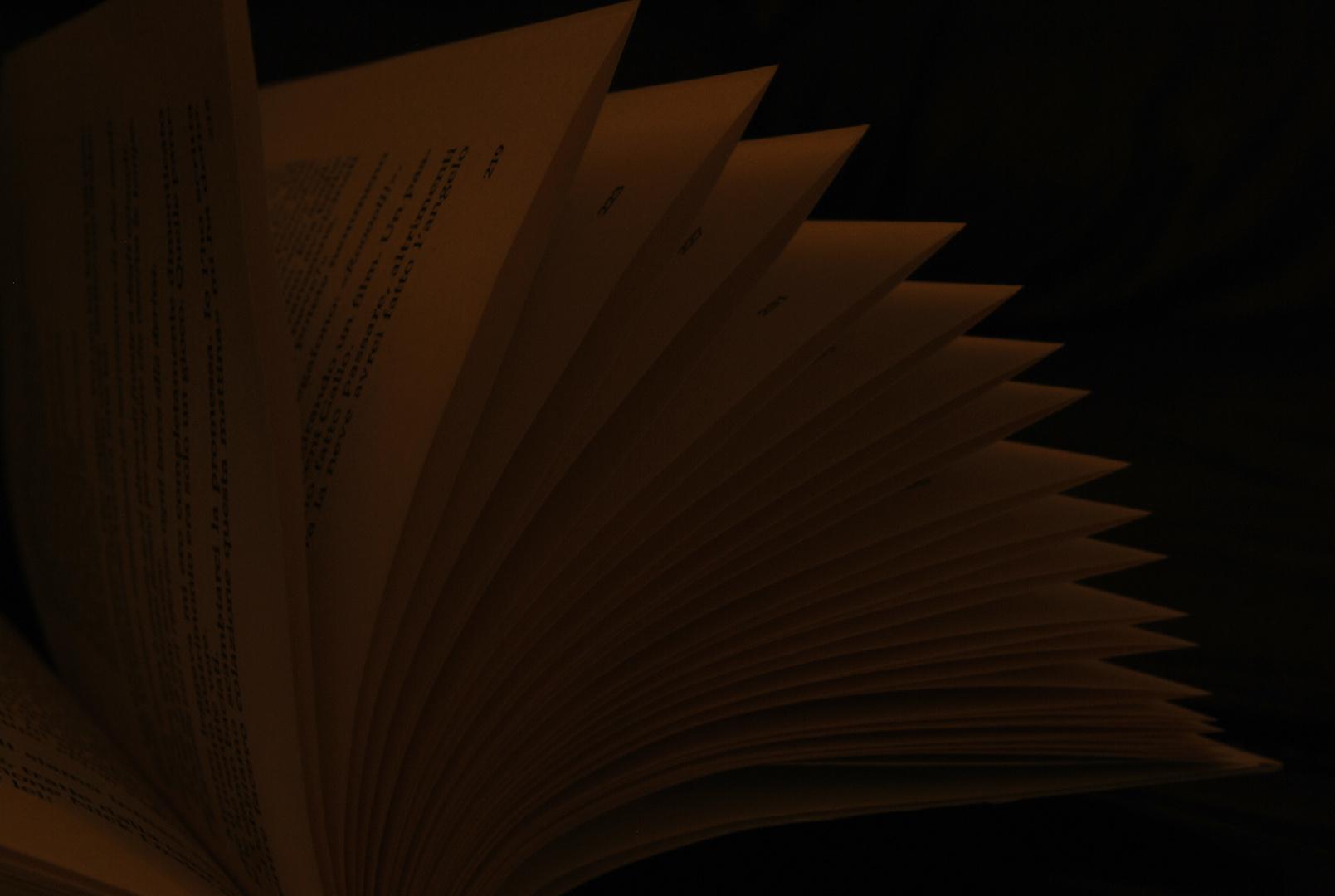 Leggi intensamente come se fosse L'ultima pagina della tua vita.