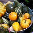 Legumes e legumes...