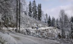 Leicht verschneiter Mühlbacherweg auf dem Plesch!