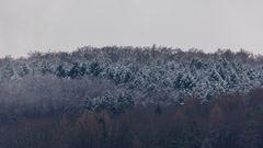 leichter Schneefall-0222