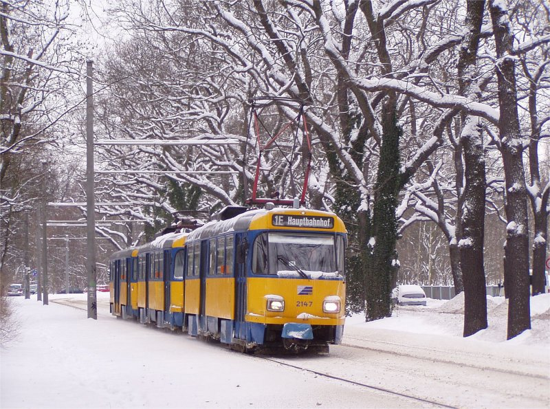 Leipzig: Im winterlichen Clara-Zetkin-Park