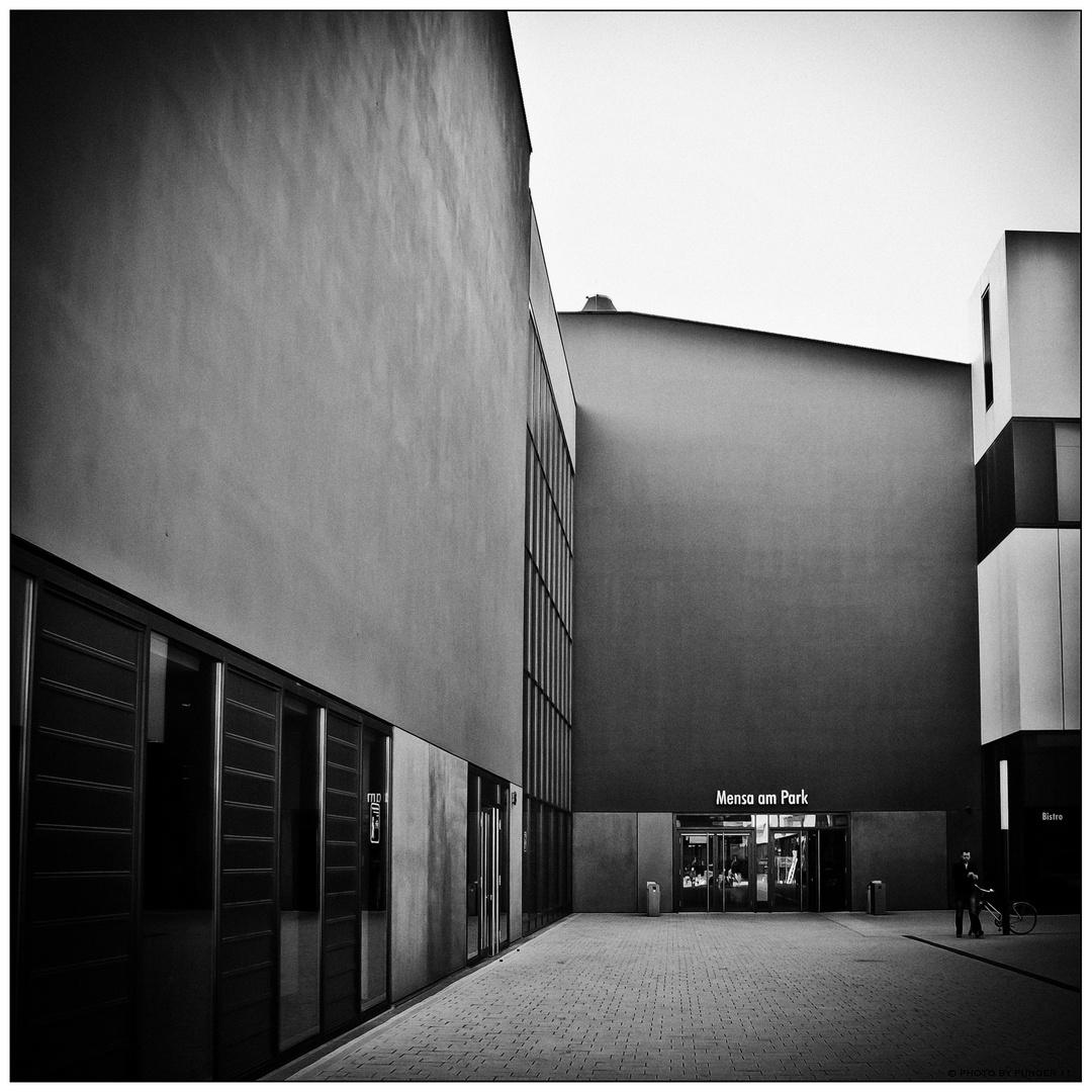 Leipziger Perspektiven N° 12