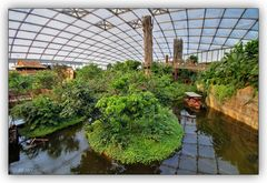 Leipziger Zoo - Gondwanaland