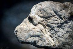 Leitzachtal Rock