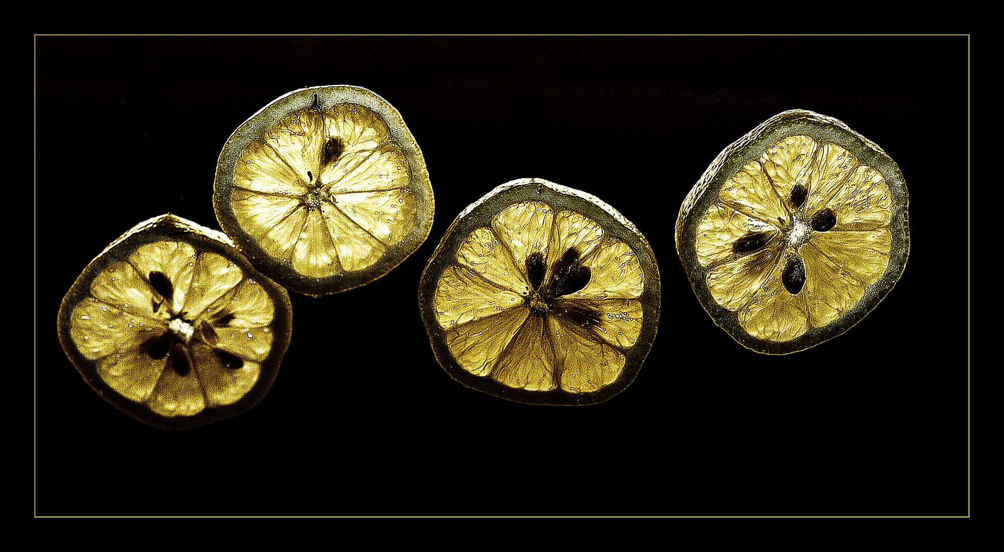 Lemon Slices II