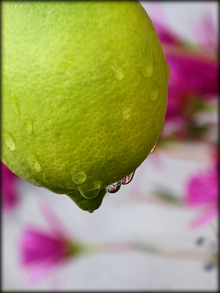 Lemon with rain drops