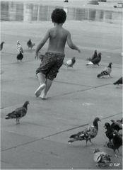 L'enfant qui batifolait parmi les pigeons...