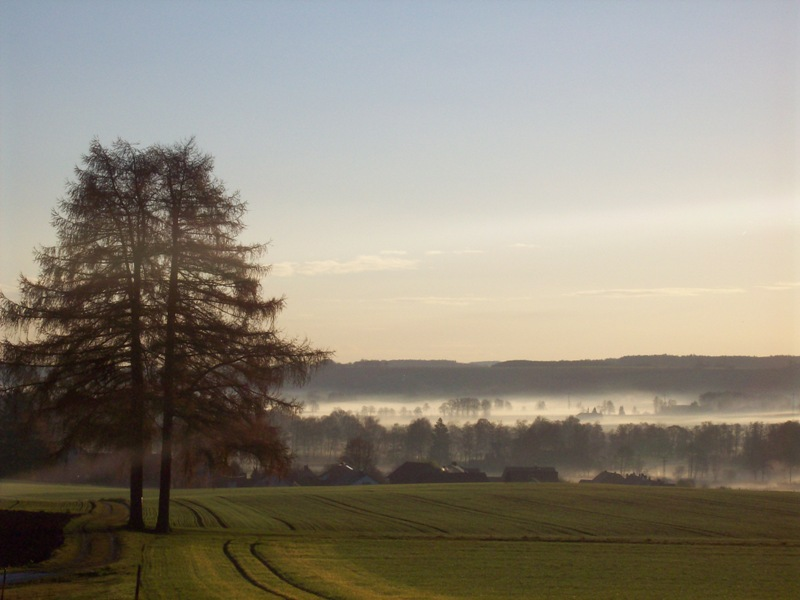 Lengdorf im Nebel