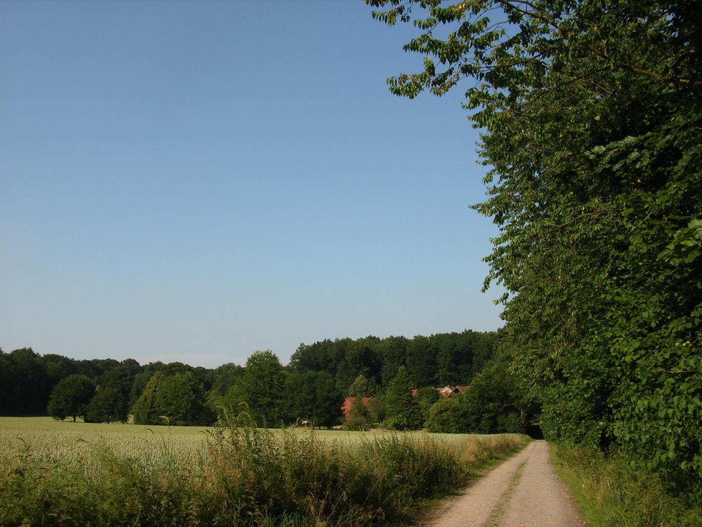 Leopoldshöhe, Baumberge, Münsterland