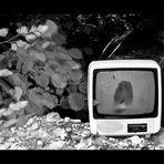 l'era della tv
