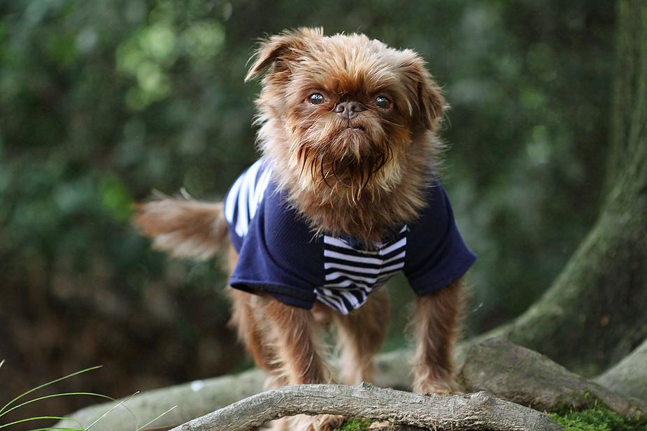 Leroy ahoi! ;)