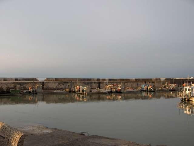 les barges à huitres prêtes à partir.........