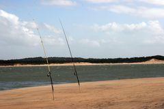 Les cannes à pêche isolées