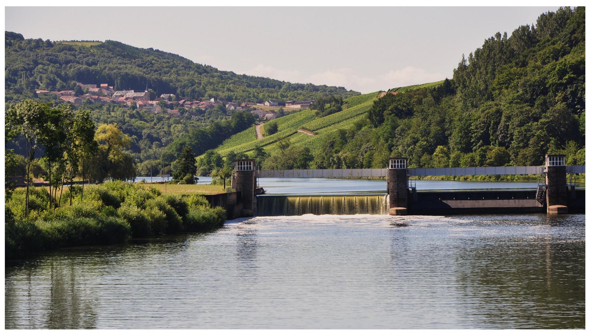 Les côteaux de la Moselle.