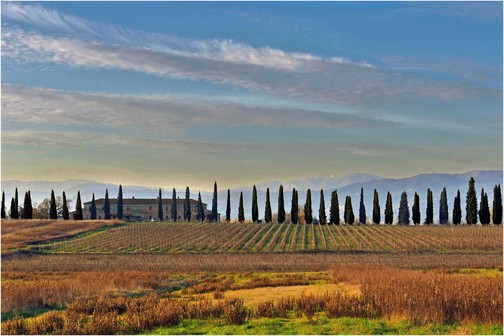 les couleurs de janvier en campagne toscane