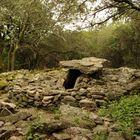 Les Dolmens de la Grande Pallière à Anduze, Gard