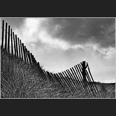 Les dunes de La Palue