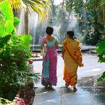 Les élégantes à Udaïpur .