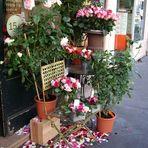 Les fleurs de Paris dans le Marais