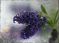 Les Fleurs du Printemps [4]