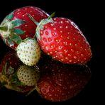 Les fraises.