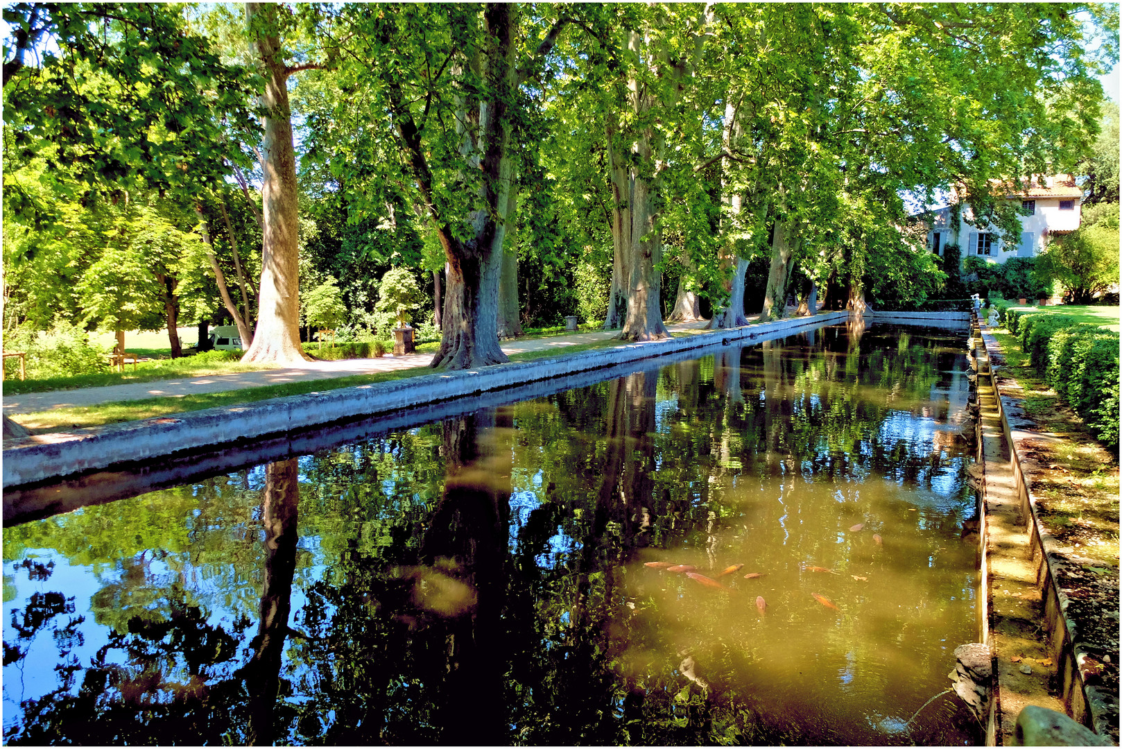 Les jardins d'Albertas (4)