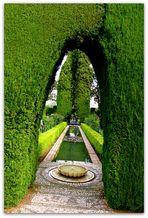 Les jardins de l'Alhambra - Grenade - 5