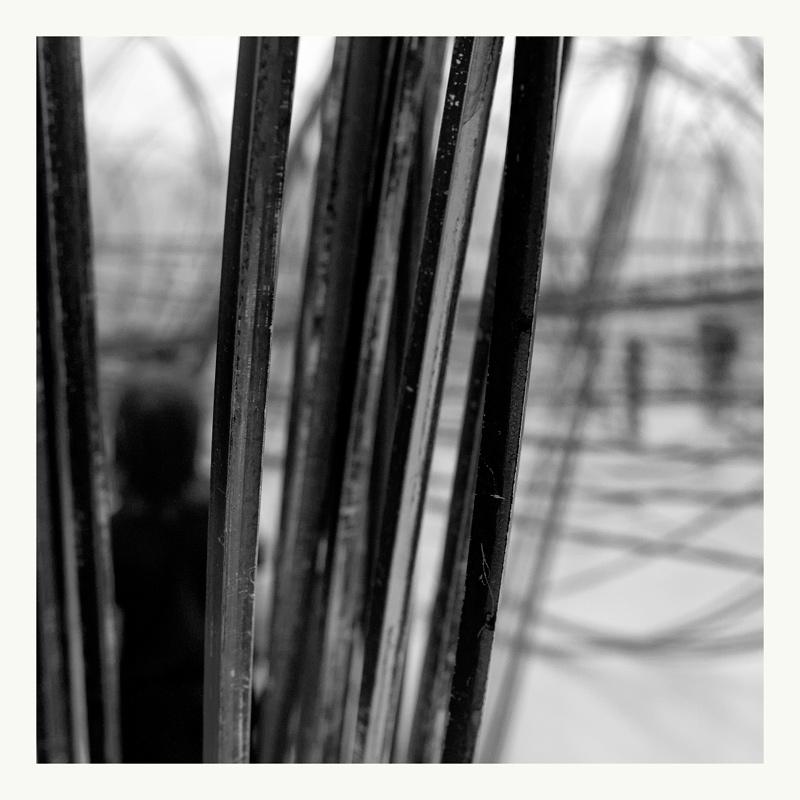 . les lignes et les courbes .