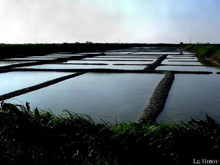 Les Marais Salants