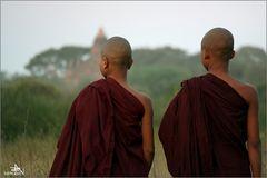 Les moines aussi...