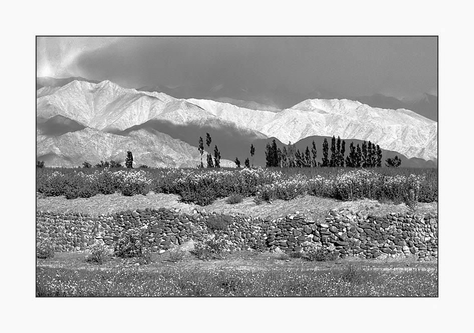 Les montagnes pâles du LADAKH