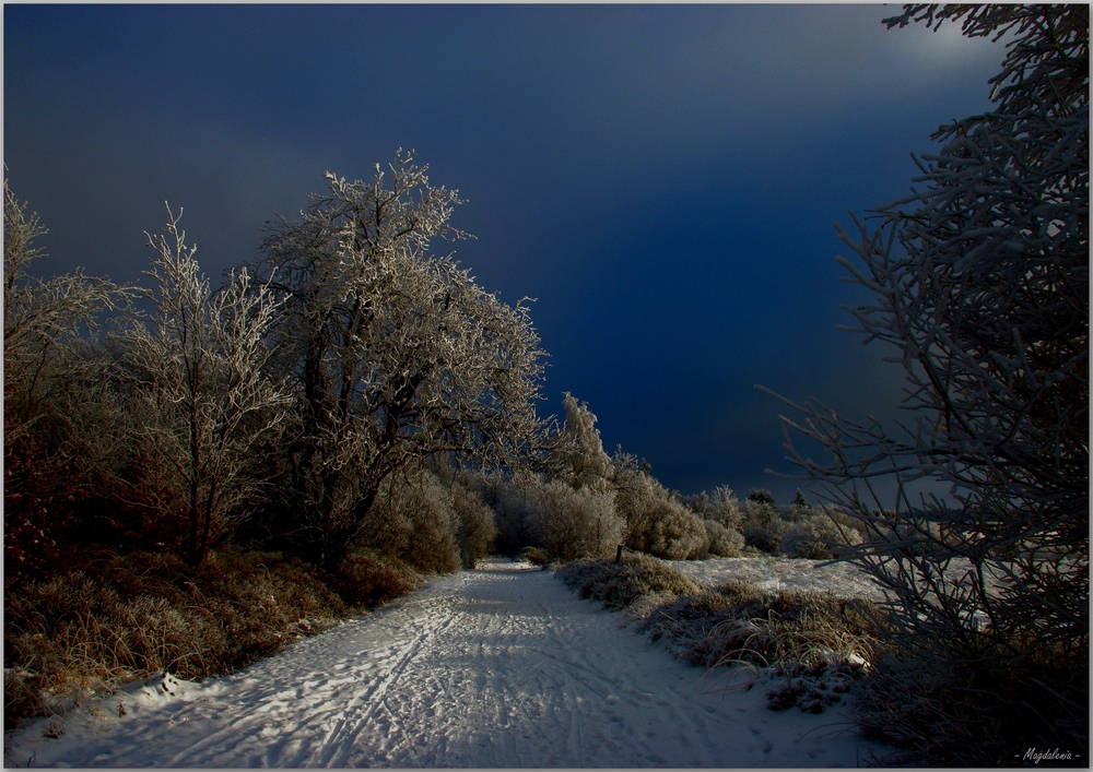 Les mystères de l'hiver
