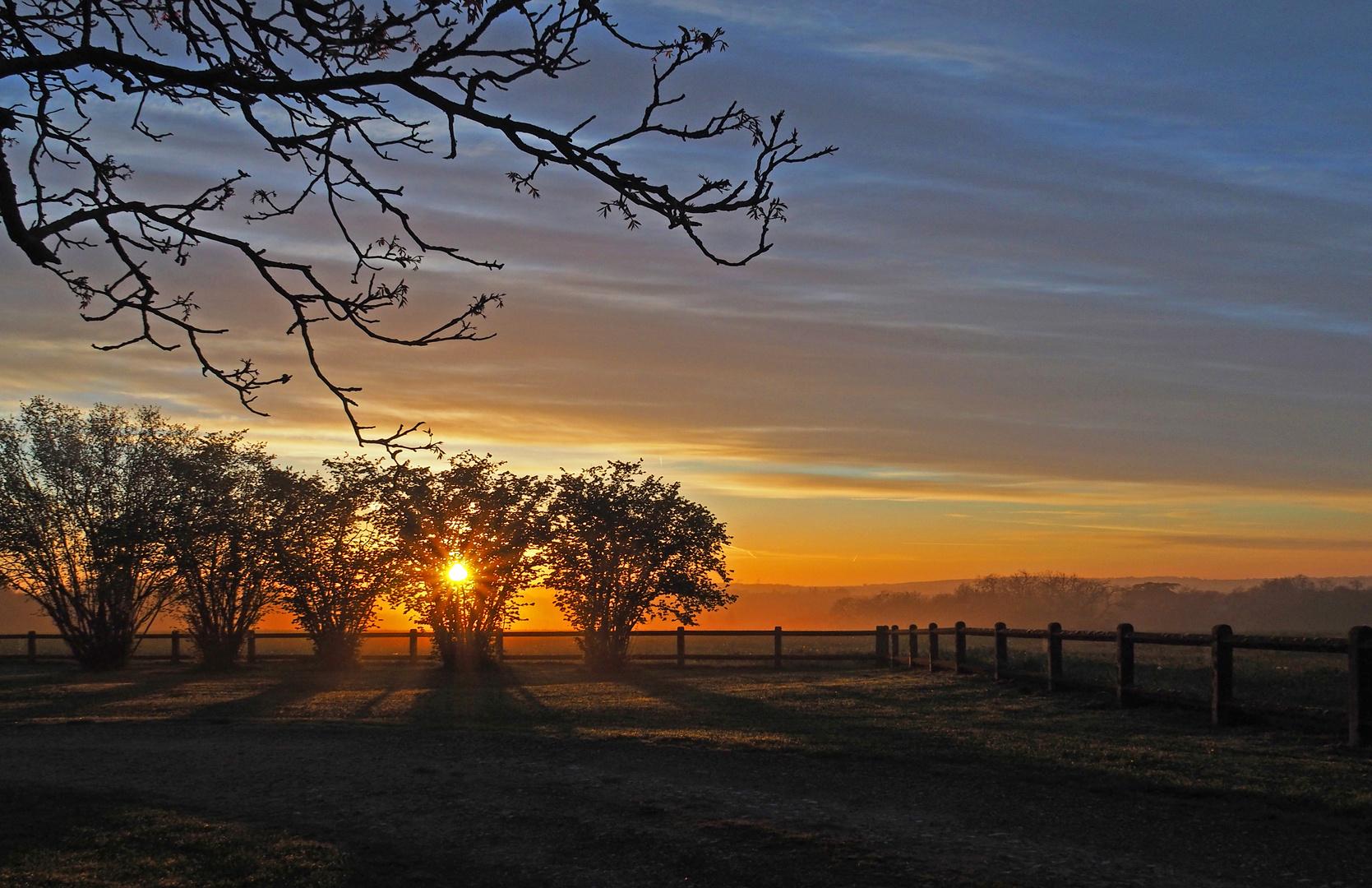 Les ombres du soleil levant
