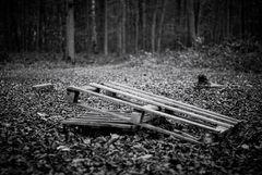 Les palettes dans le bois