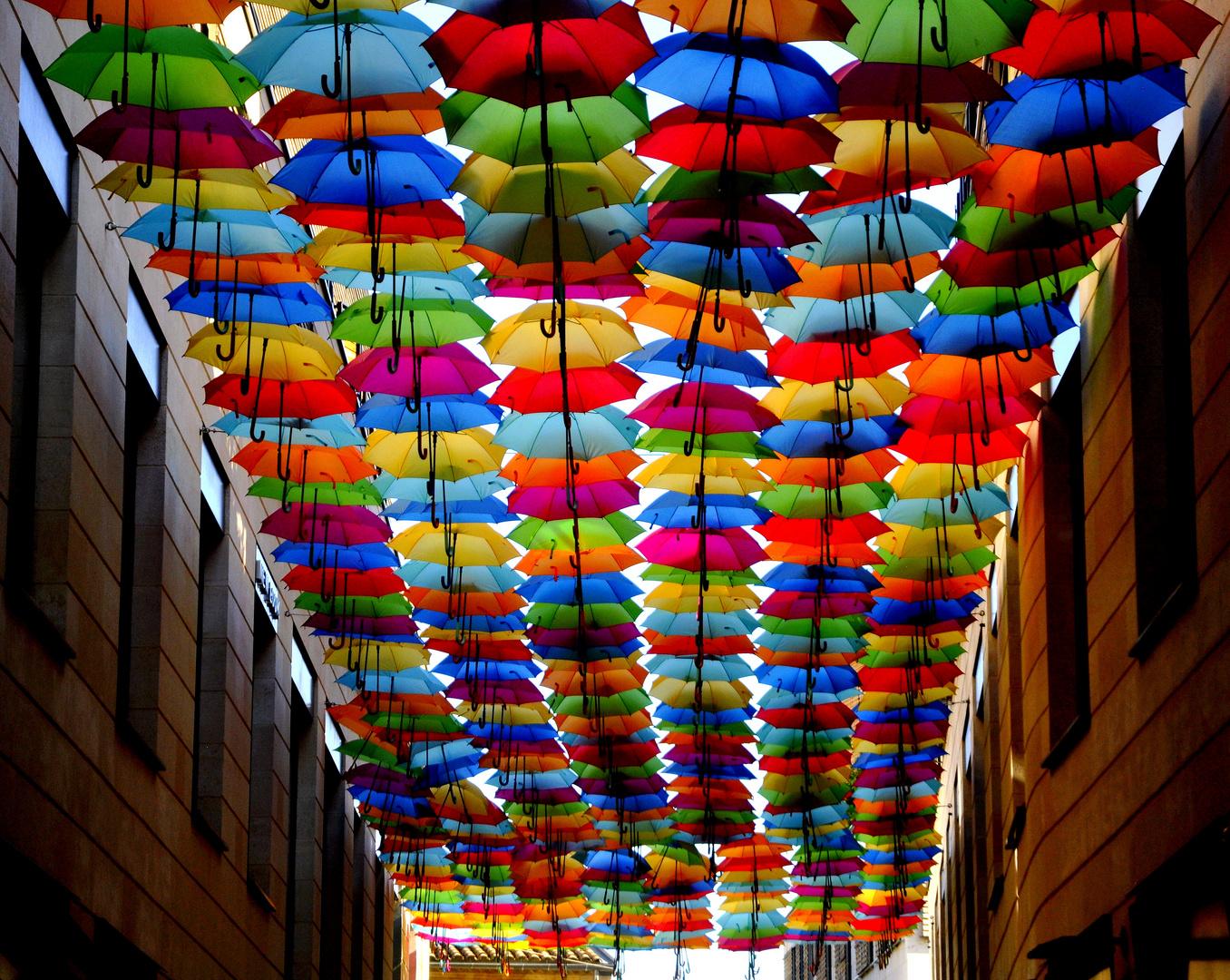 les parapluies de la promenade ste catherine