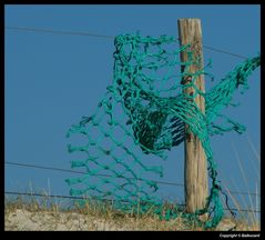 """"""" Les pêcheurs de vent """""""