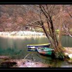 les petites barques