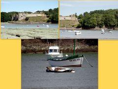 Les phoques de St Cast le Guildo ....