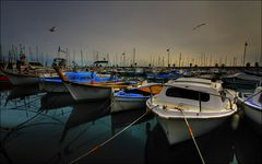 Les Pt'its bateaux