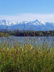 Les Pyrénées vues du lac de L'Arrêt-Darré