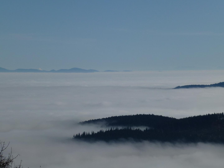 Les Vosges et la Forêt Noire