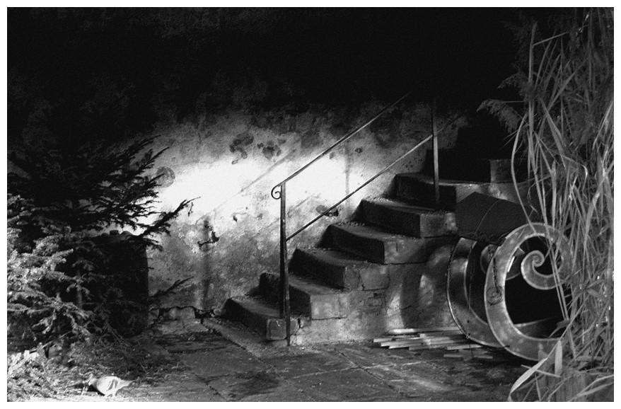 L'escalier dans la remise.