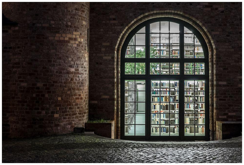 Lesen bildet-auch nachts