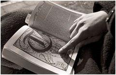 Lesen in der Wintersonne