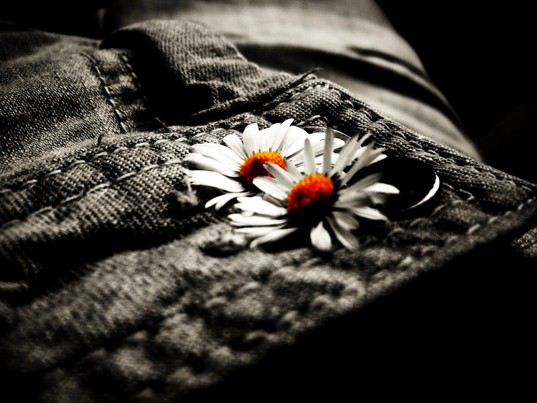 L'espoir est bien court qui n'occupe que l'espace d'un rêve.