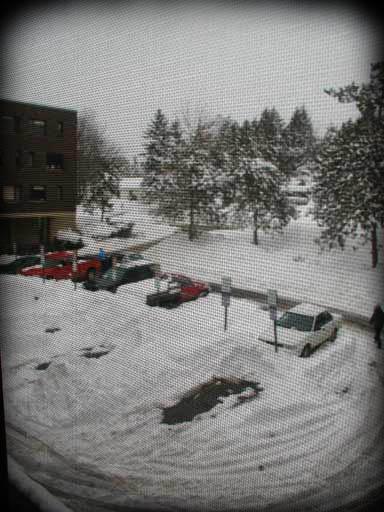 """Let it snow, let it snow, let it snow"""