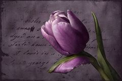 Letter for you....