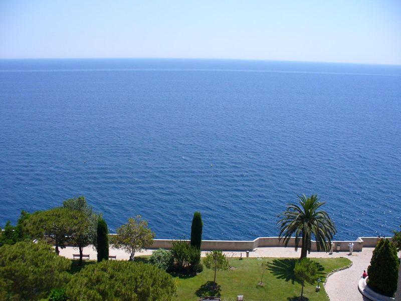 Letzte Palme vor dem Mittelmeer!