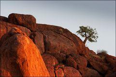 letzte Sonne auf Bushmans Koppe