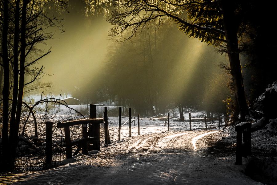 Letzte Sonne im Tal